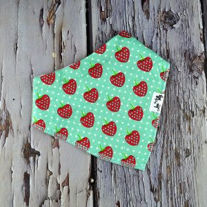 Strawberry kisses baby bib